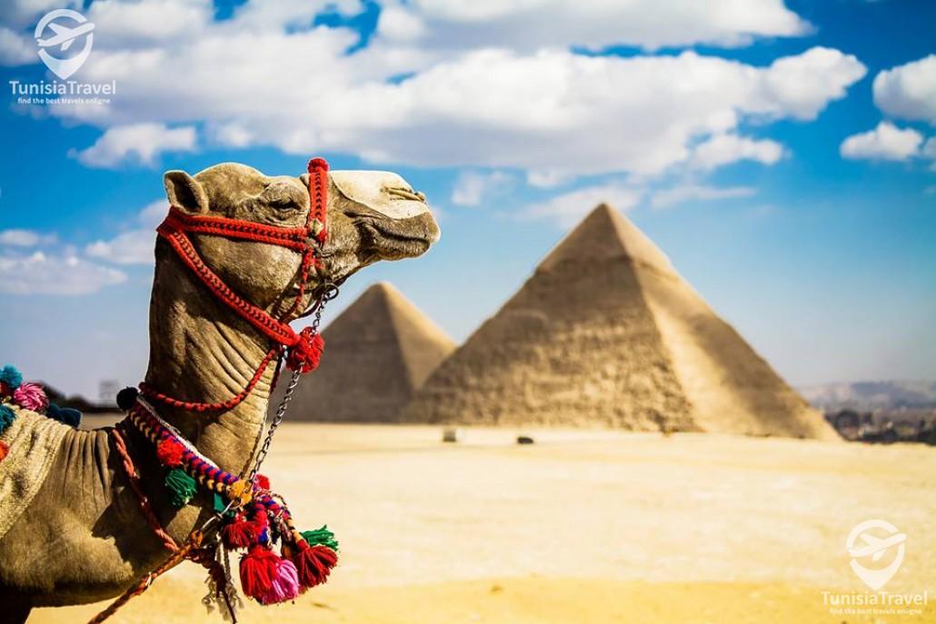 voyage Caire & Sharm El Sheikh