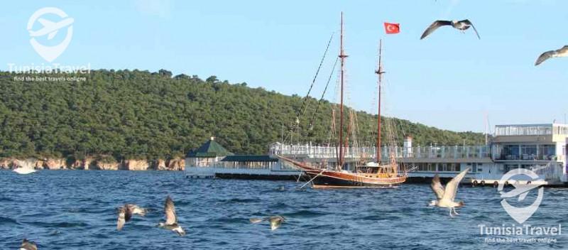 Taha Voyages