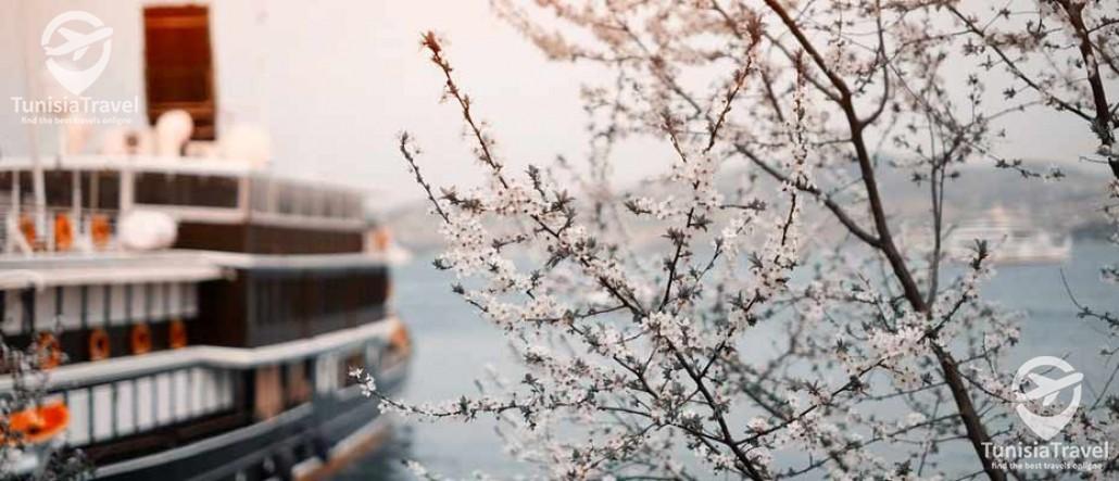 voyage ISTANBUL & BURSA Vacances d''Hiver 2018