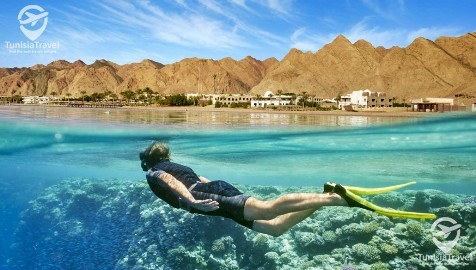 voyage Sharm El Sheikh & Caire