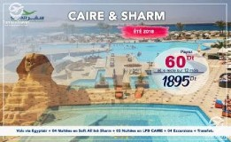 safarvoyages SHARM & CAIRE